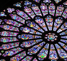 Rose Window I - NOTRE DAME DE PARIS by Jamie Alexander