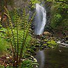 Rancina Stream, Pesegh Waterfall by jimmylu