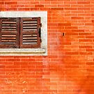 Window on orange wall by Silvia Ganora