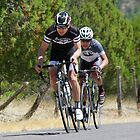 Tour of the Gila  ~ Gila Monster Race 1 by Vicki Pelham