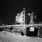 """""""Dark Castle"""" by Bradley Shawn  Rabon"""