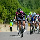 Tour of the Gila ~ Gila Monster Race 3 by Vicki Pelham
