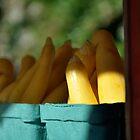 Baby veggies by claibornepage
