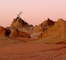 LAKE MUNGO  by bobby1