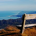 Mount Fyffe Summit, Kaikoura, New Zealand by Deb Gibbons