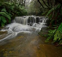 Leura.. by Warren  Patten