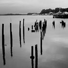 Risby Cove -Tasmania      B&W by lighthousecove
