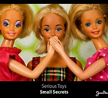 Serious Toys - Small Secrets by Jouko Mikkola