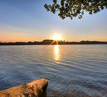 The Lake by Mike Matthews