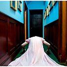 creeper by Bronwen Hyde