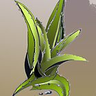 just cactus by kseniako