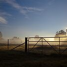 Country Mist by John Vandeven
