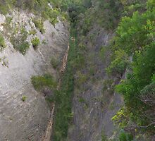 WoakwineCutting, SE South Australia by davidjc