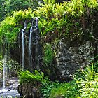 Water fall at Blarney Castle  by Tim Gumz