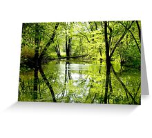 Calm After The Storms Greeting Card