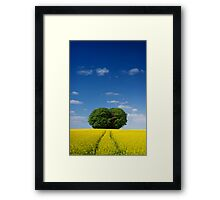 Heart of the Cotswolds, England Framed Print