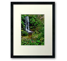 The Beauty Within : Rainbow Springs National Park Framed Print