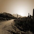 Desert Road in Arizona by Greg Allen