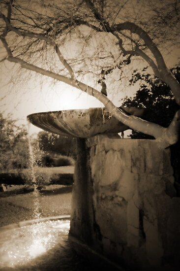Fountain at Frank Lloyd Wright's Taliesin West by Greg Allen