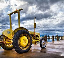 Big Yellow by Cathy Middleton