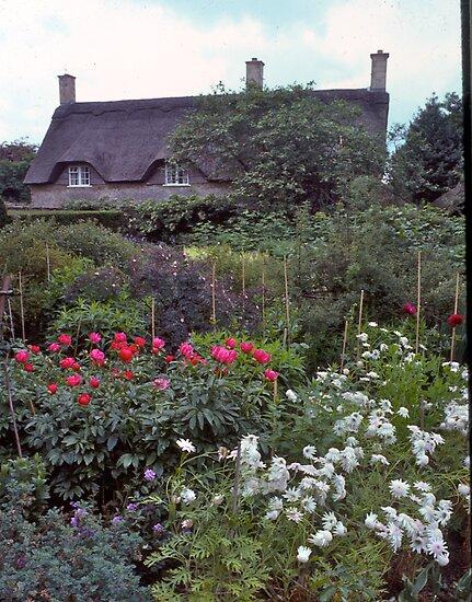Cottage garden#3, Stratford-upon-Avon, UK by johnrf