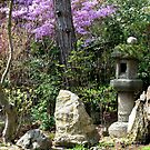 Tranquil Space - Kyoto Japan by SuziTC