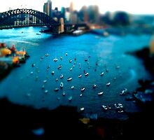 Sydney Harbour by iPhoneographyli
