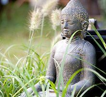 Buddha by torishaa