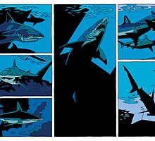 sharks by David  Kennett