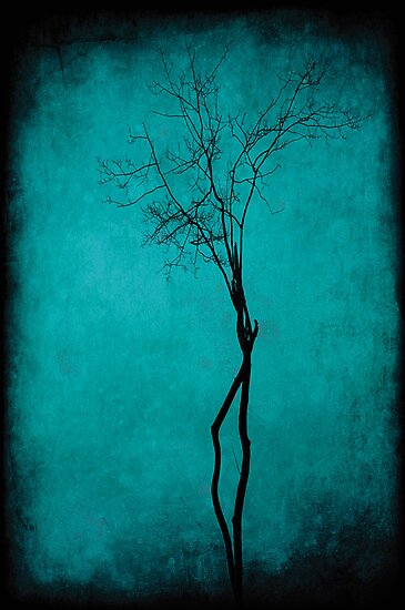 Tree of life by Anne Staub