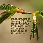 He who has begun in you a good work ~ Phil 1:6 by Robin Clifton