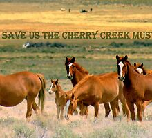 Save The Cherry Creek Mustangs by Jeanne  Nations
