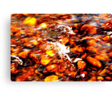 Flow Dynamics of Water, River Tees, England Canvas Print