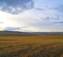 Prairies Meet The Rockies by Barrie Daniels