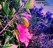 Pretty Bitch by Sarah Dos Pfeifle