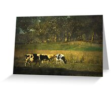 The bush, the cows, the gums ... Greeting Card