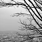 Montmartre Winter by Tiffany Dryburgh