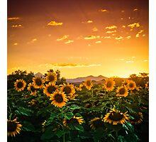 Heaven's Evening Photographic Print