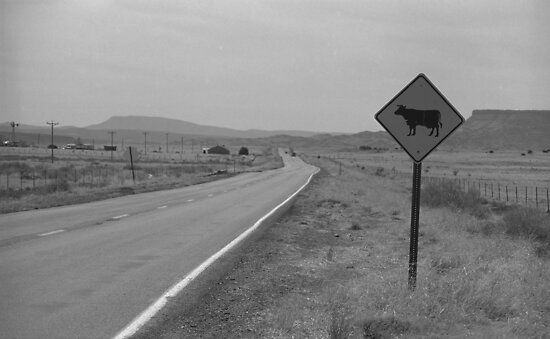 Route 66 - New Mexico Highway by Frank Romeo