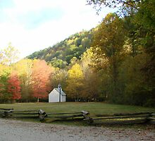 Palmer Chapel in Autumn Color by Jean Gregory  Evans