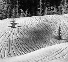 Contour Lines in Snow by Tula Top