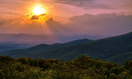 Evening Escape - Shenandoah National Park, Virginia by Matthew Kocin