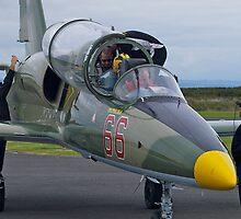Going adventuring, l-39 jet trainer, Australia. by johnrf