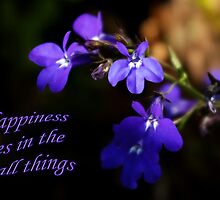 Sweet Lobelia - Happiness by steppeland