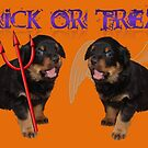 Cute Rottweiler Trick or Treat by taiche