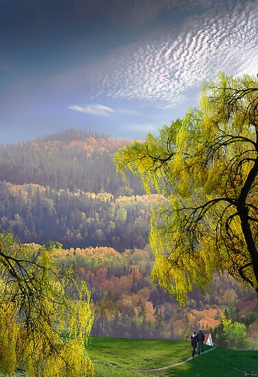 Cabin Retreat by Igor Zenin