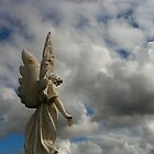Angel with wing rust by GraemeR