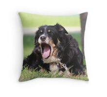 Pup, our  Australian Shepherd is ready for a nap Throw Pillow