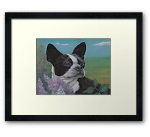 Lady in the Lilacs Framed Print