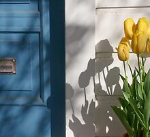 Blue Door and Yellow Tulips by Denice Breaux